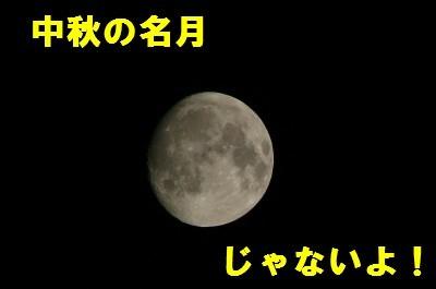 10.3E381AEE69C882010.4-ceeb0.JPG