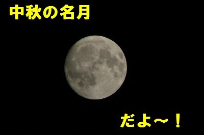10.4E381AEE69C882010.5-78614.JPG