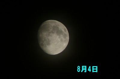 8E69C884E697A5.JPG