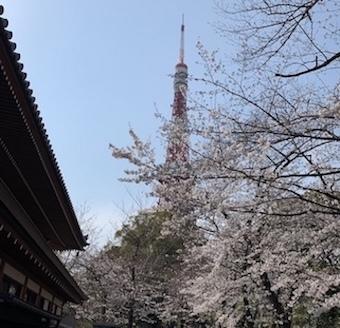 m_tower_u-2a044.jpg